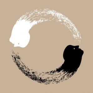 Geleide meditatie Balans